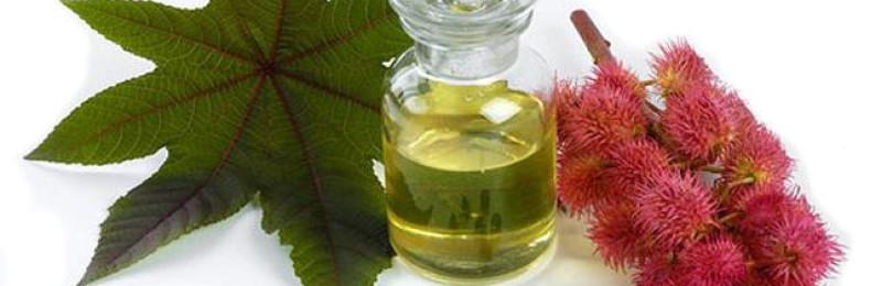 Касторовое масло для лица от прыщей