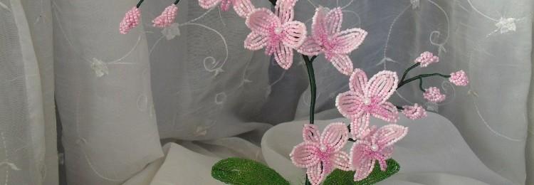 Орхидея из бисера: фото, пошаговые схемы плетения