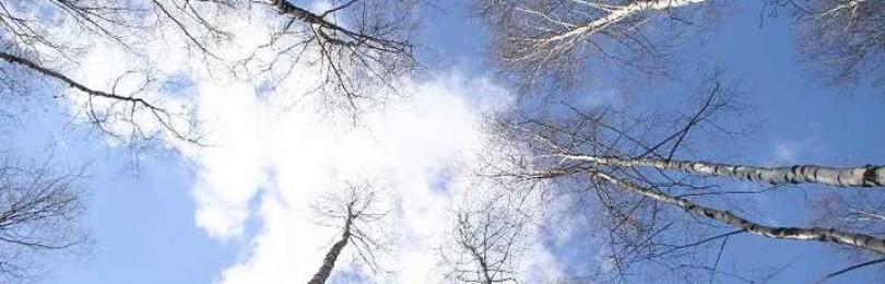 Приметы на 1 марта: что за праздник Ярилин день, народные традиции и ритуалы