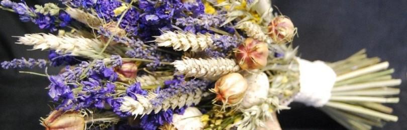 Приметы о сухоцветах: к чему дарить, если букет из них у невесты