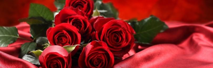Приметы про красные розы: к чему дарят девушке, женщине, мужчине