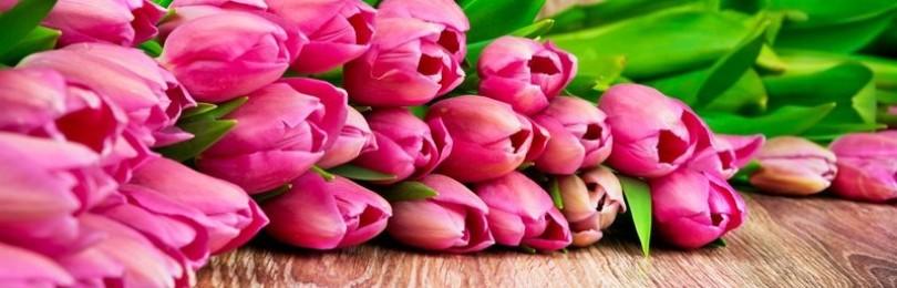 Какие цветы подарить на 8 Марта: девушке, маме, бабушке, теще, коллегам