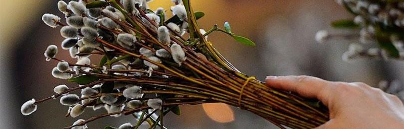 Народные приметы на Вербное воскресенье: традиции, обычаи, обряды