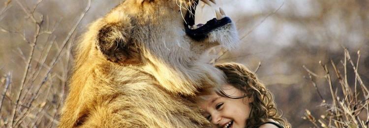 Совместимость Льва и Девы: в любовных отношениях, дружбе, работе