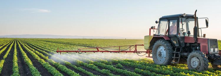 Приметы на урожай: на Урале, Башкирии и Московской области
