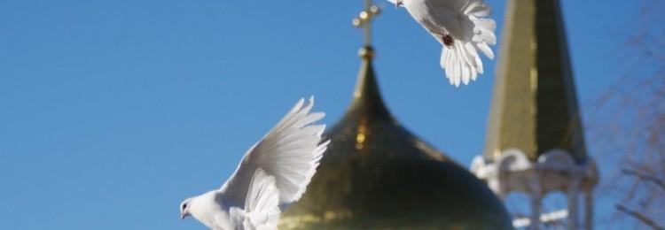 Приметы на Благовещение Пресвятой Богородицы (7 апреля): что можно и нельзя делать