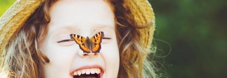 Бабочка села на человека: приметы и суеверия
