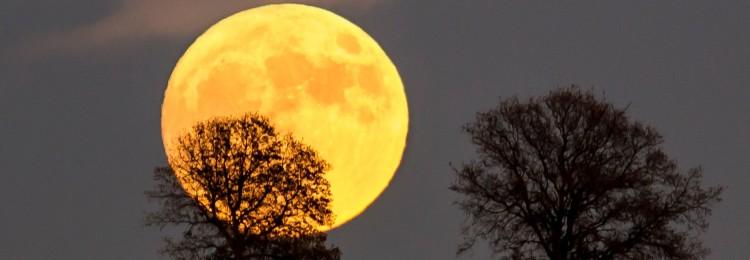 Красная, желтая луна: что это значит, когда бывает, приметы и суеверия