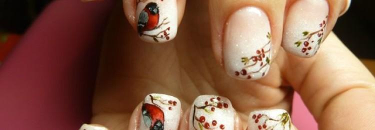 Дизайн ногтей со снегирями