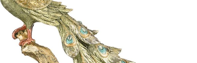 Приметы про павлина и павлиньи перья: почему нельзя держать дома, отзывы