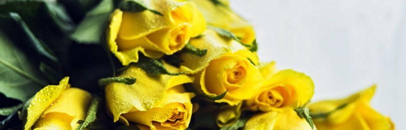 Какая примета, если дарят желтые розы