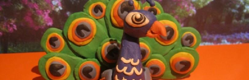 Как сделать павлина из пластилина пошагово