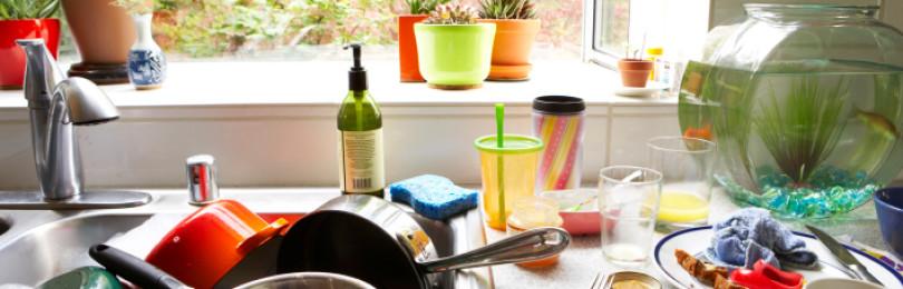 Почему нельзя оставлять грязную посуду на ночь