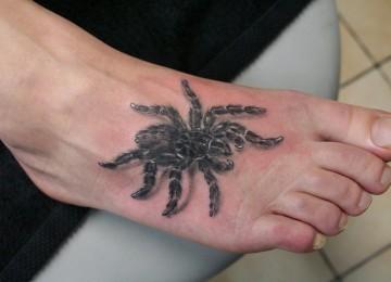 Что значит по примете паук на голове и других частях тела