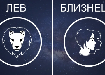 Совместимость Льва и Близнецов: в любовных отношениях, дружбе, работе