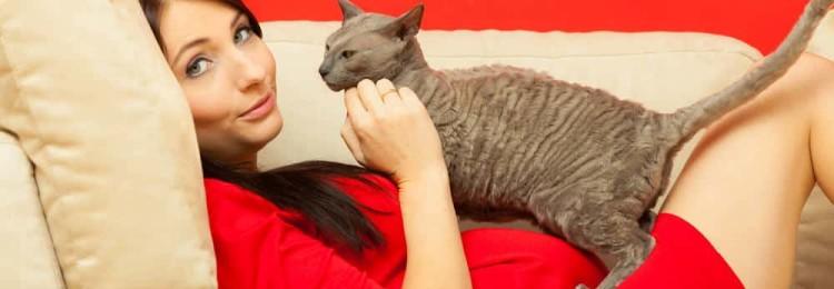 Почему беременным нельзя обижать кошек и других животных