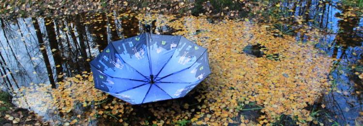 К чему приметы, если потерять, забыть или найти зонтик