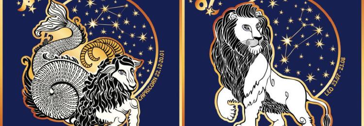 Совместимость Льва и Козерога: в любовных отношениях, дружбе, работе